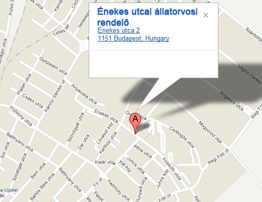Az énekes utcai állatorvosi rendelő térképe
